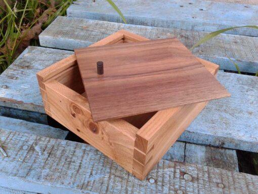 caja olmo centenario -2 (4)